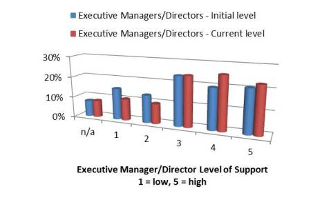 Executive Manager Level of Support of 5S