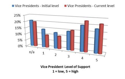 Vice President Level of Support of 5S